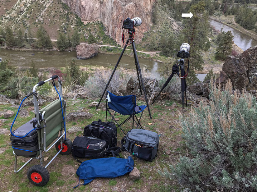 While you might not have all the gear this guy has, you can still snag a decent picture with a zoom setting on your camera or a setup like the one to the right. Photo courtesy of  George Lepp .