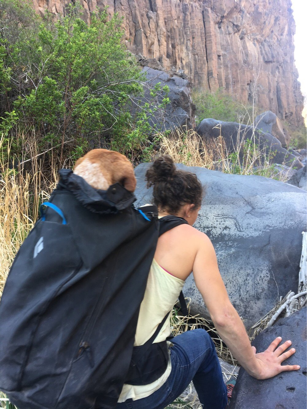 Rebecca Yaguda finds a new use for her pack in helping a freezing wet dog out of The Gorge at Smith Rock.