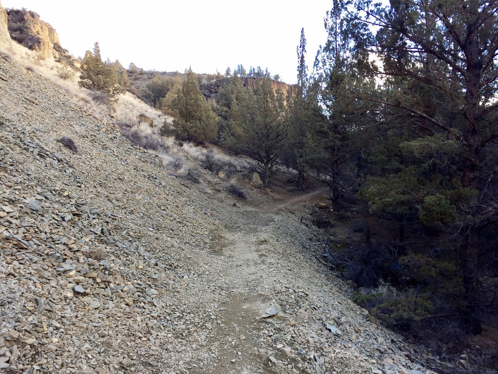 The Wolf Tree Trail scree slope section.