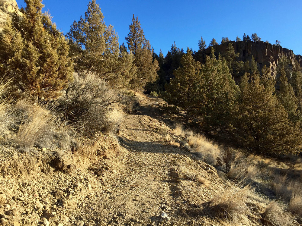 Headed up the Wolf Tree fork to the Burma Road.