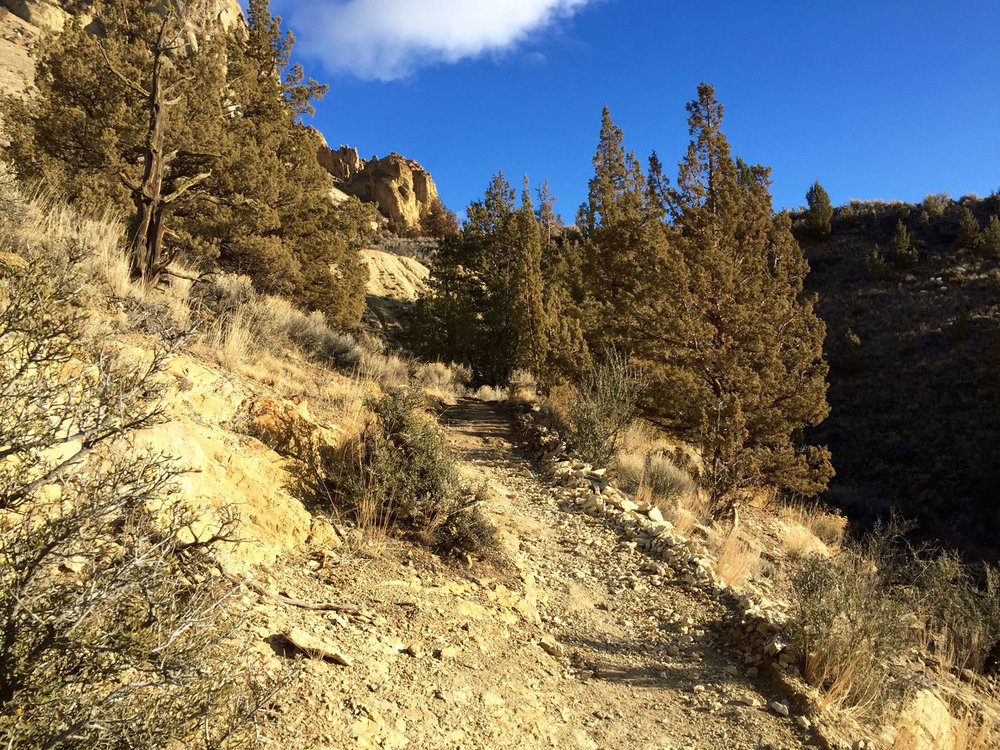 Final stretch of the Wolf Tree Trail with Burma Road cited.