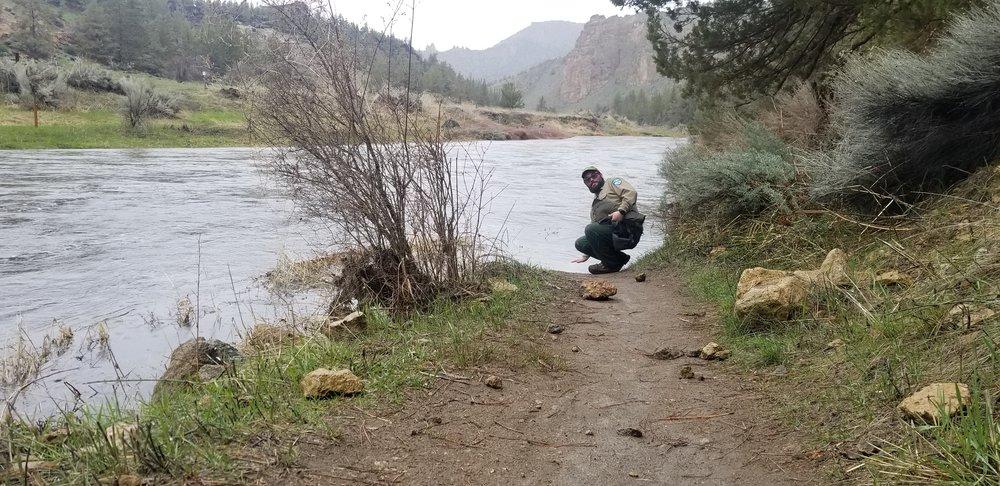 Smith Rock State Park Ranger Nolan Ferdinand balances carefully where the Crooked River has risen 2 feet on the trail.