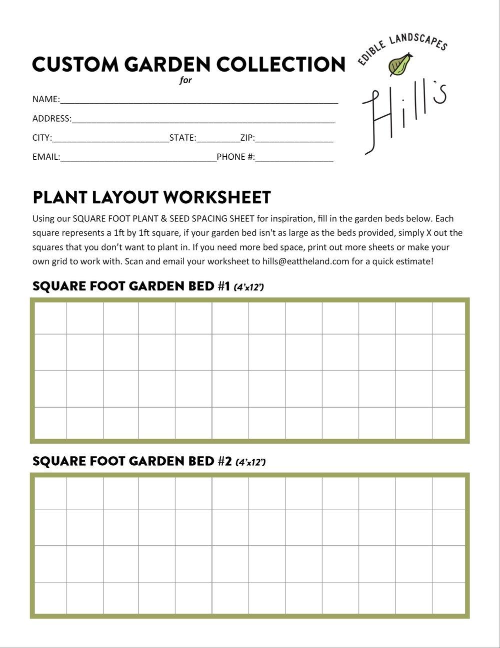Plant Layout Worksheet