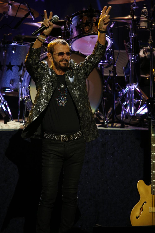 Ringo 1.JPG