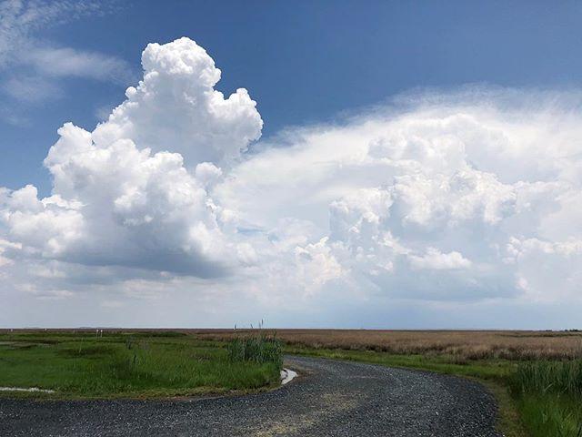 Thunderheads coming over the marsh.  #chesapeakebay #savethebay #thunderstorm #weather #islandtime