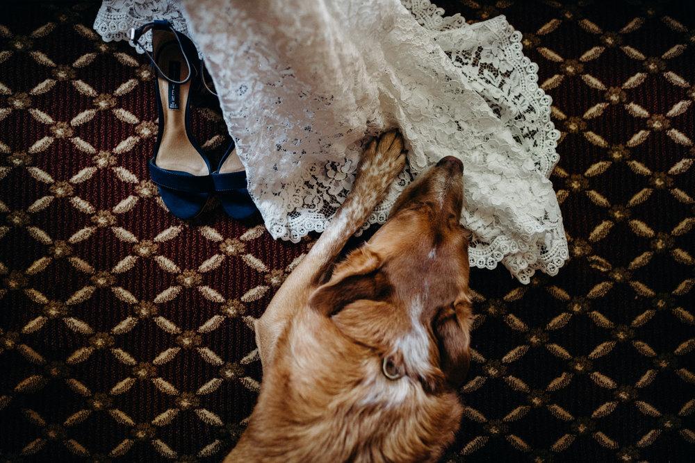 dietzen_aubrey-texas-the-springs-wedding_002-1.jpg