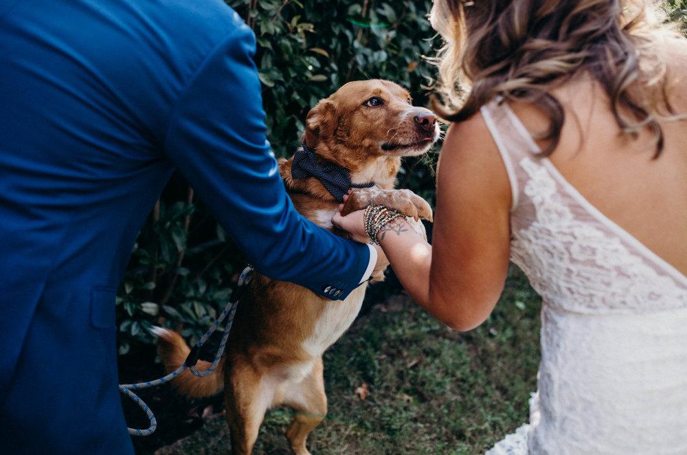 dietzen_aubrey-texas-the-springs-wedding_008-1.jpg