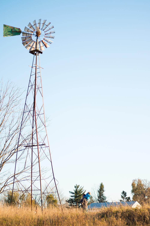 Michigan windmill