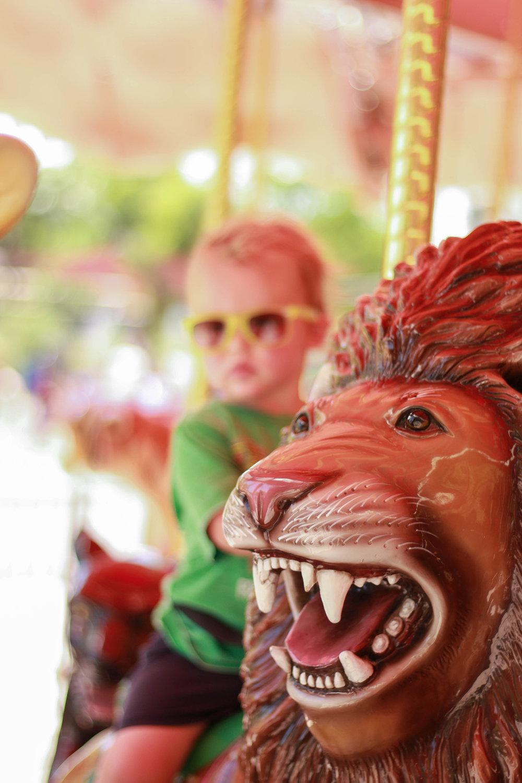 carousel at phoenix zoo