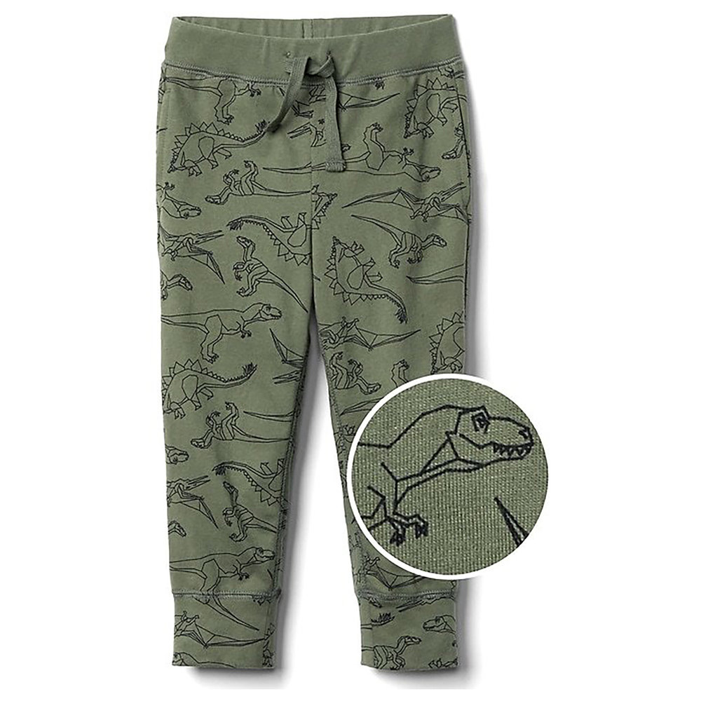 dino pants  that my son picked out. Love him.