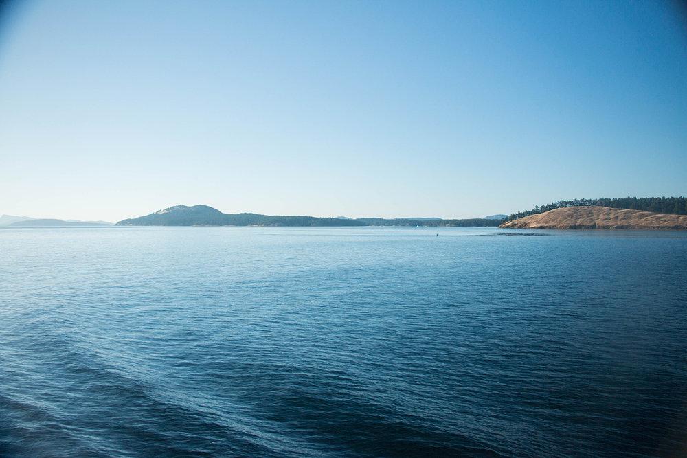 ferryview.jpg