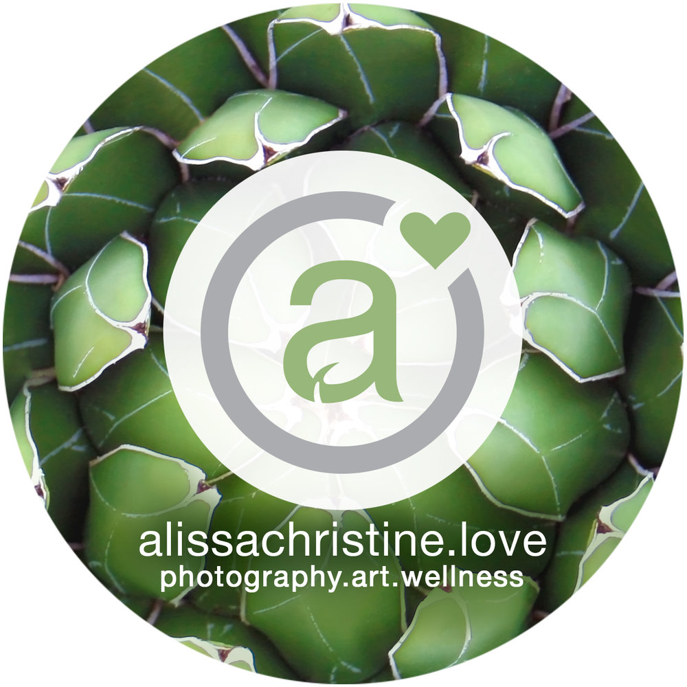 alissachristinelove-socialicon-leaves-square.jpg