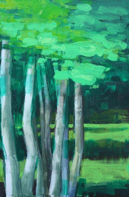 silver_birch_trees.jpg