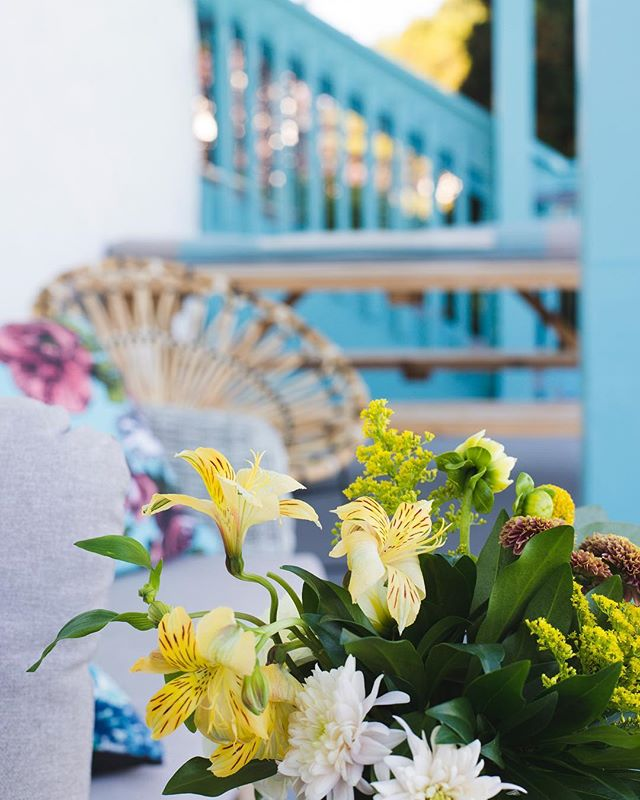 We hope everyone is enjoying a restful Easter Sunday 🌼 . . . . . . . #happyeaster #easter #sunday #floral #yyj #victoriabc #portagewest #waterfront #apartmentliving #welcomehome #community #pooldeck