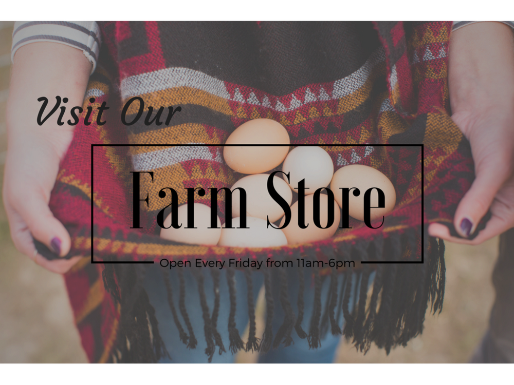 Visit our Farm Store!.png