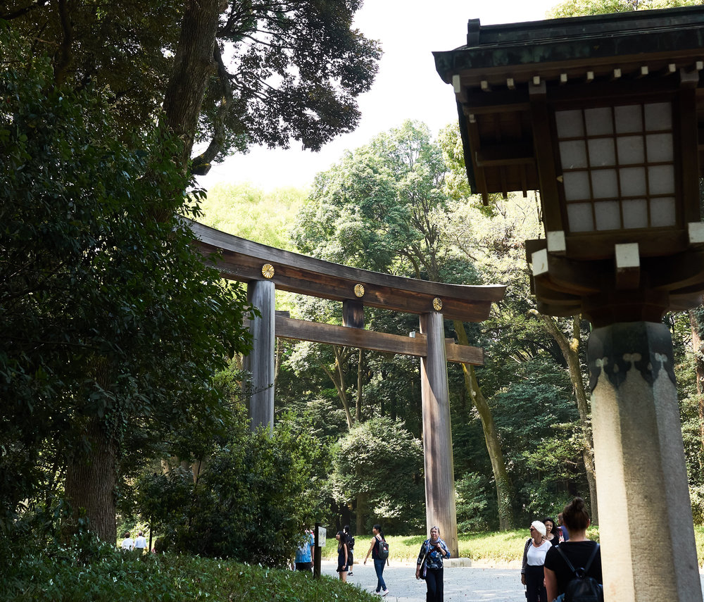 Tokio_Park_8_kom.jpg