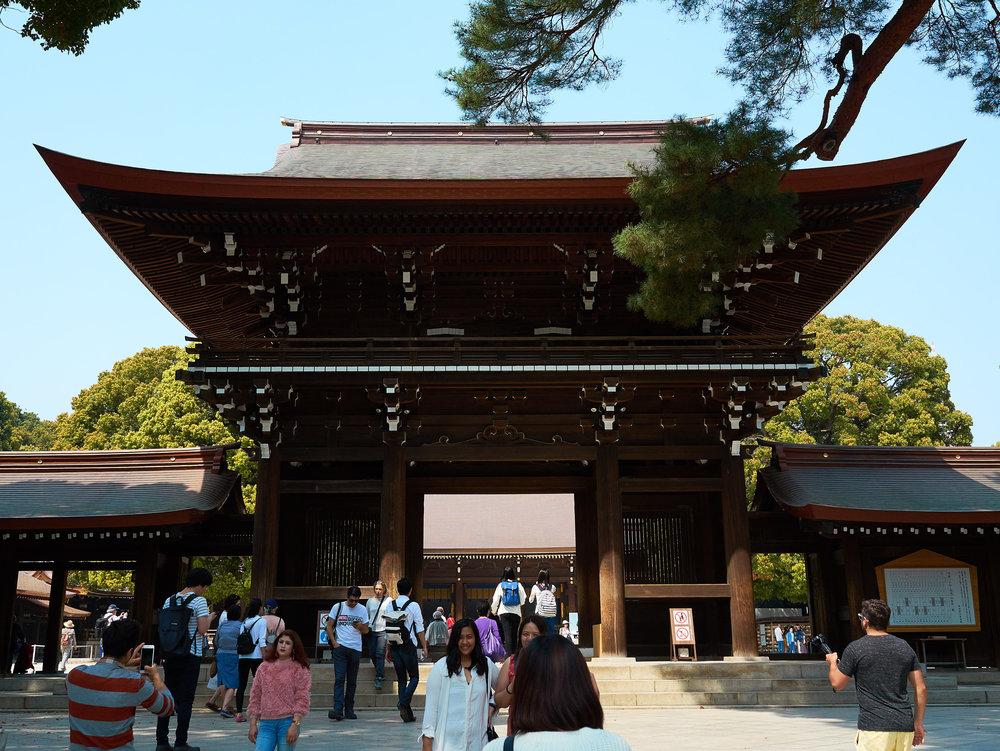 Tokio_Yoyogi-Park_3_kom.jpg