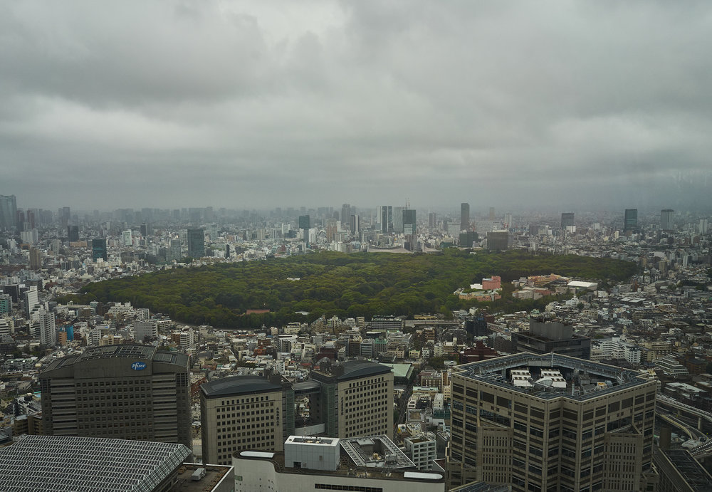 Tokio_Government Buidling_View_3_kom.jpg