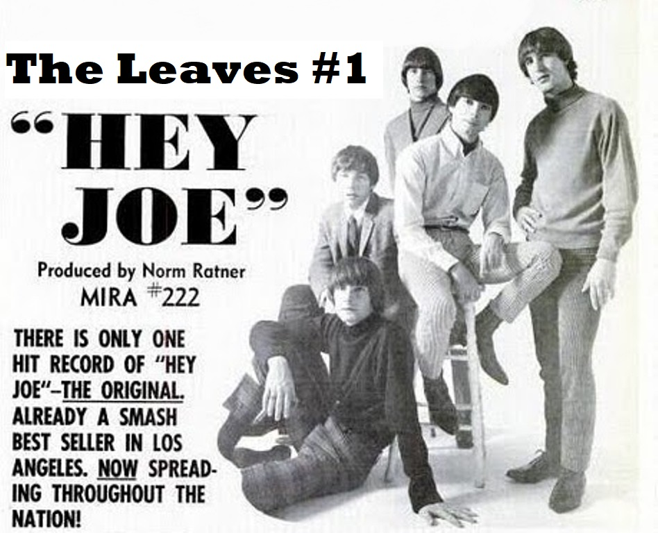 Leaves Hey Joe poster cropped.jpeg