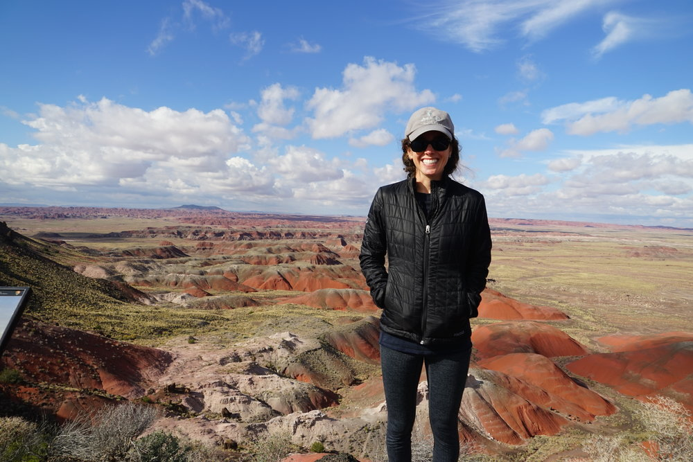 Hiking in the Petrified Forest