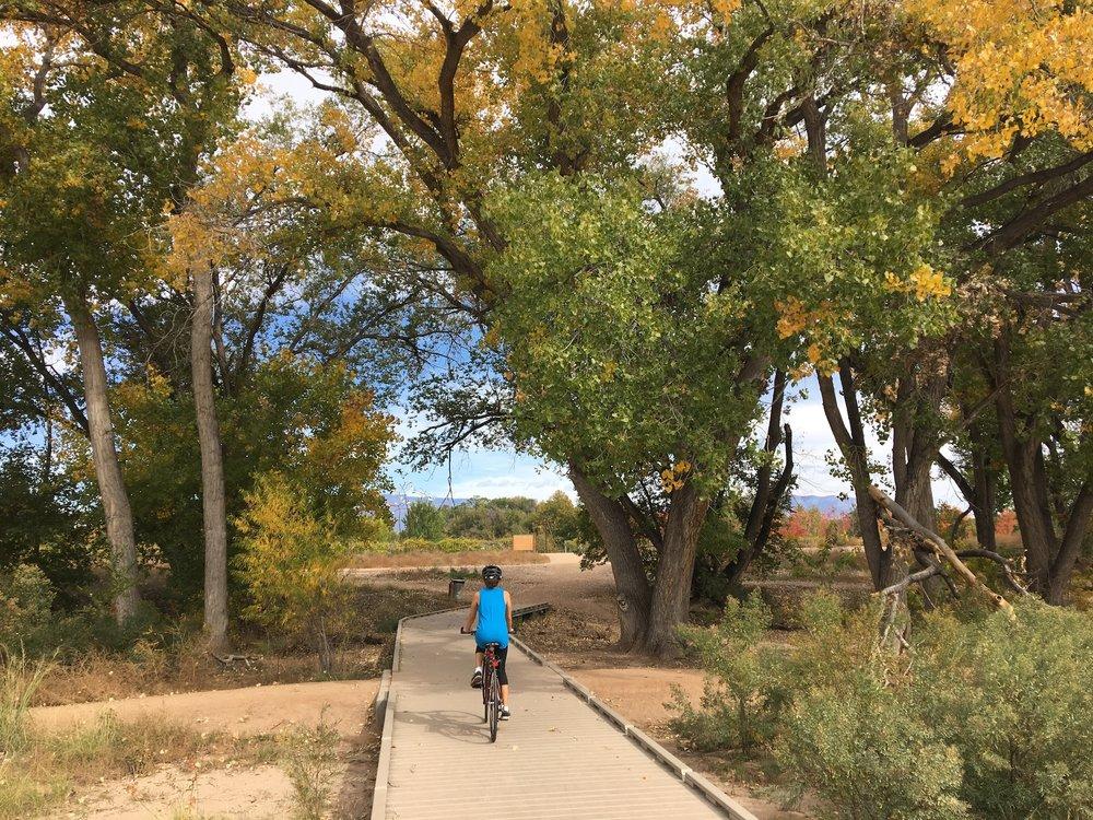 Biking on the Paseo del Bosque Trail