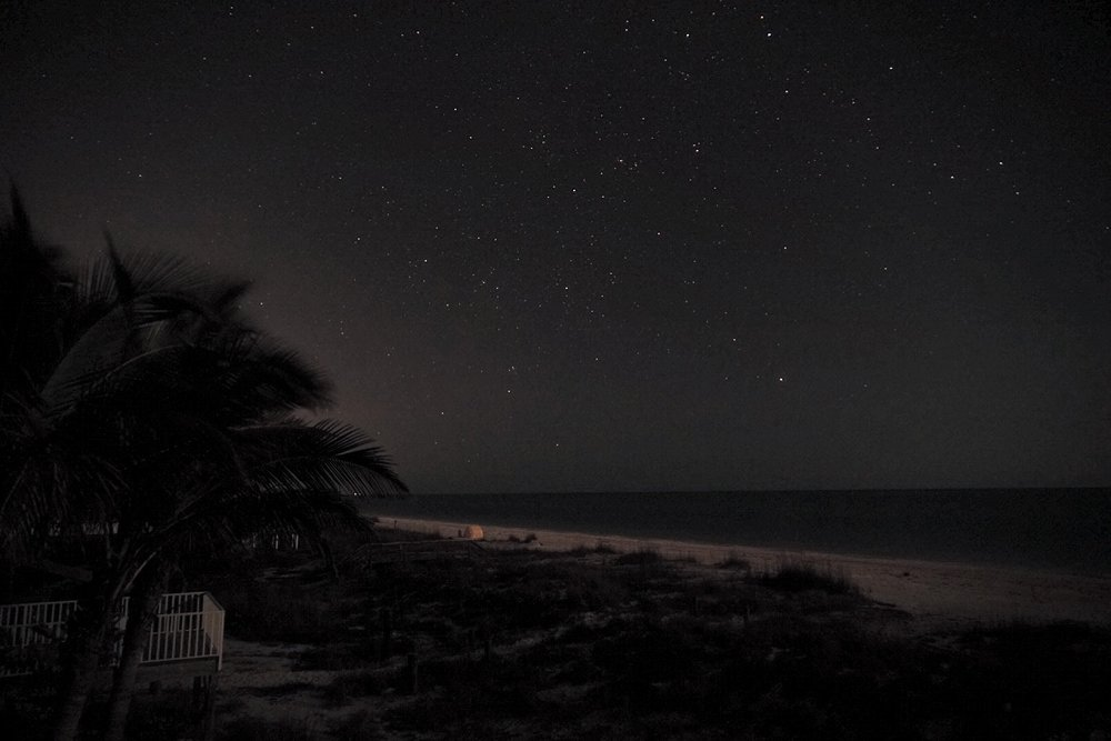 Stars over Palm Island, FL