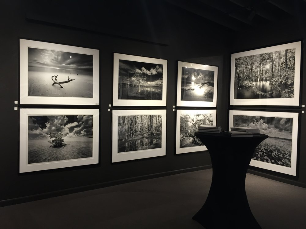 Cylde's Gallery