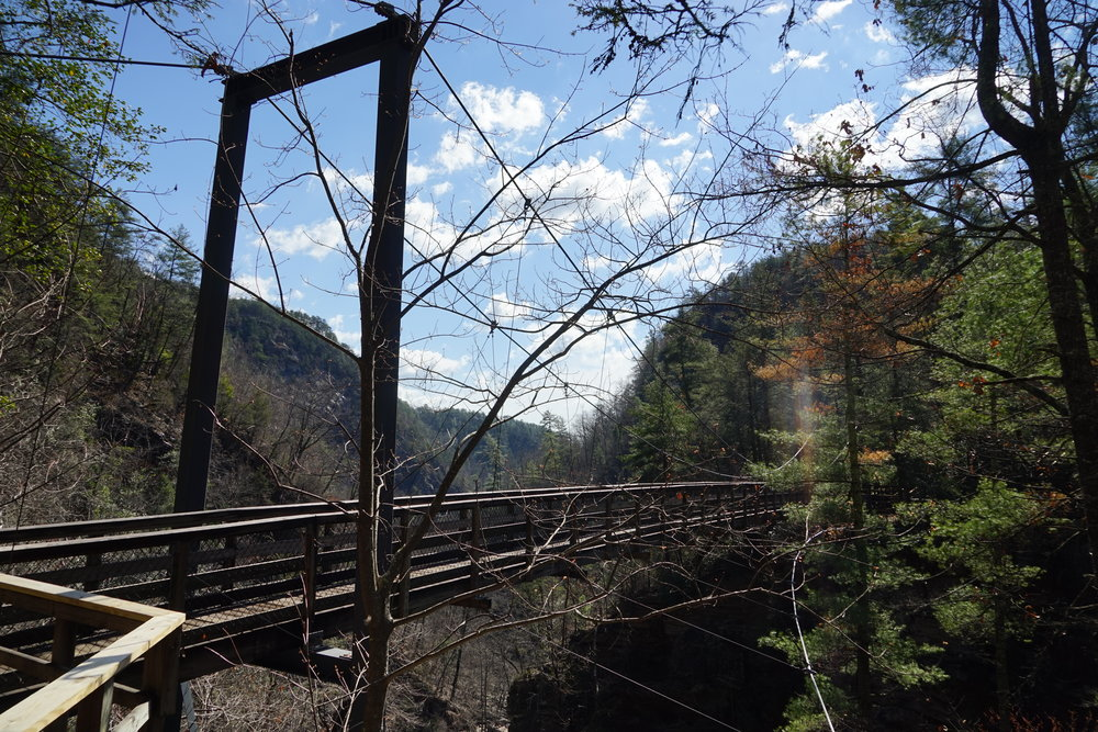 Bridge crossing on Hurricane Falls hike
