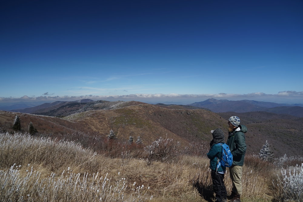 Hike to Black Balsam Knob off of the Blue Ridge Parkway