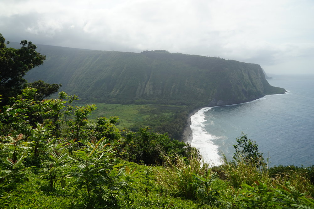 Views from Waipi'o Overlook