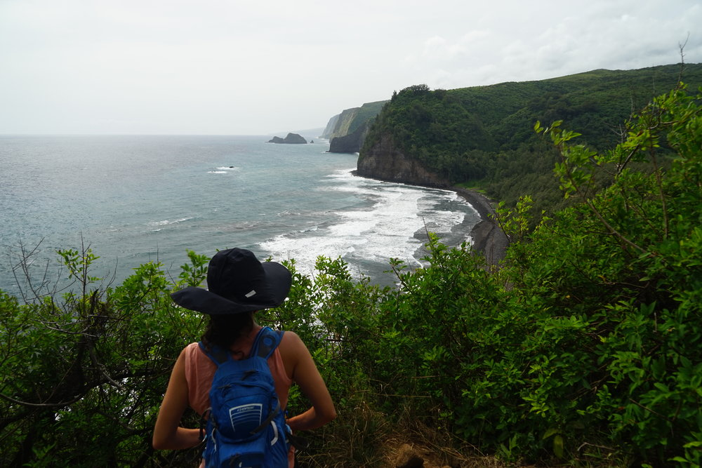 Looking out onto the Pololu Valley coast