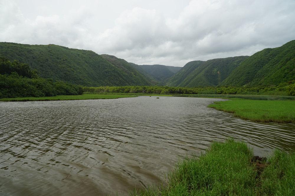 Pololu Valley floor