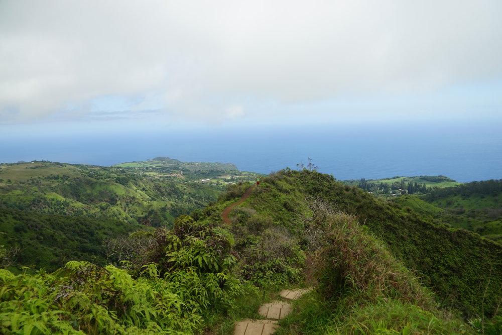 Waihe'e Ridge Trail (I spot a Dylan, can you)?