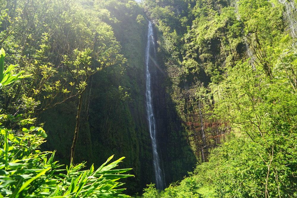 Hike the Pipiwai Trail to Waimoku