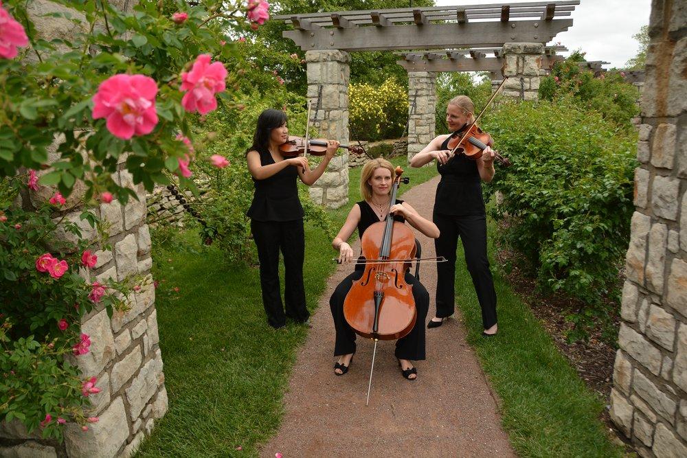 fontana roses.jpg