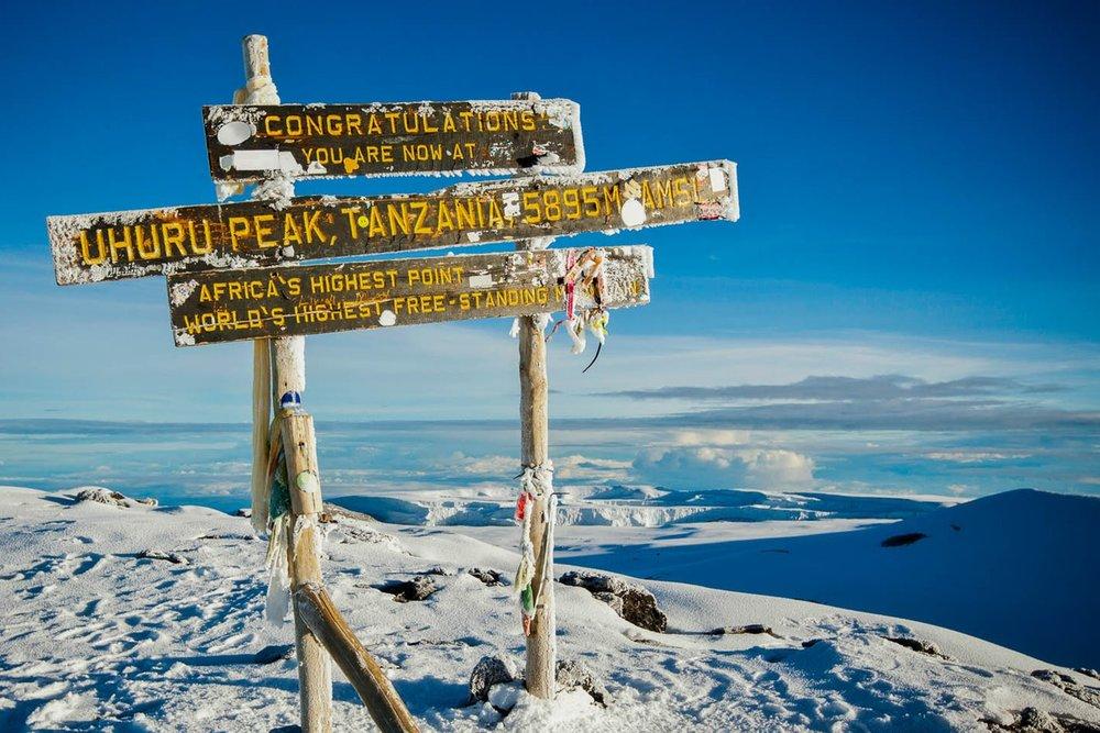 Wondermore Kilimanjaro 4.jpg