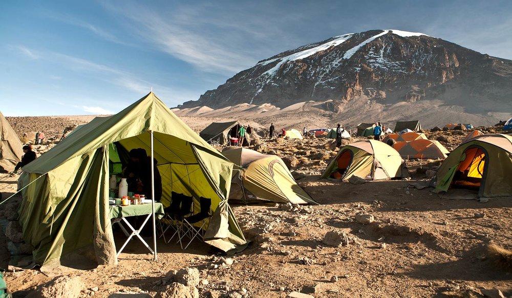 Wondermore Kilimanjaro 8.jpg