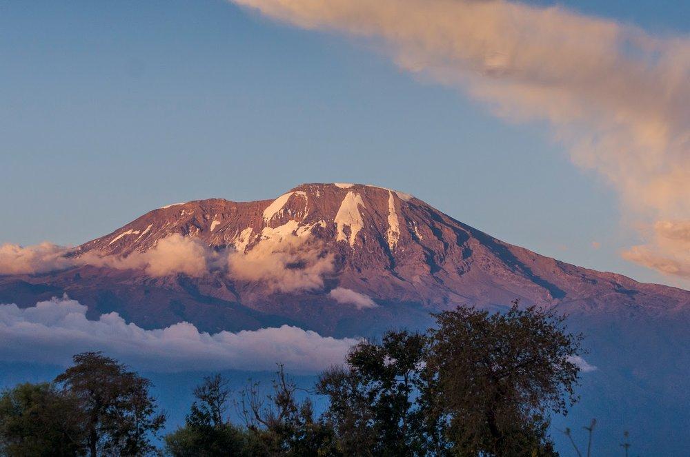 Wondermore Kilimanjaro 9.jpg