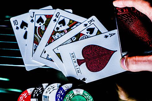 shin-cards5.jpg