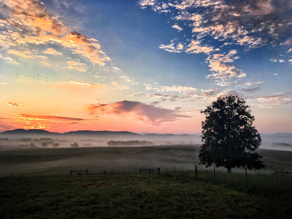 Sunrise over Maryville, TN on a perfect September wedding day. The tree standing guard, the fencerow & rolling fields that leads to the mountains, the clouds and color of the sky, and, the sun just before it rises all tell of the calm, poetic beauty on this perfect September wedding day.