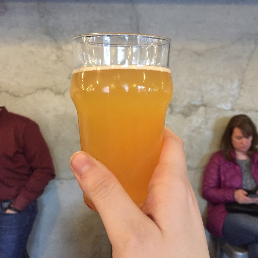 Trillium Brewing Company's Scaled IPA fresh and hazy off the tap.