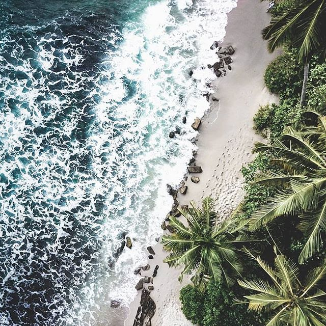 We're off on a 2 week break 🏝️ to the wonderful Sri Lanka Any orders placed from today will be shipped on the 25th Feb  Image via @ohdroneboy 💗