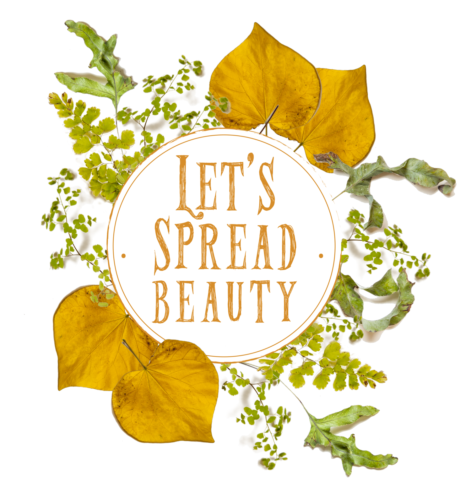 Let's Spread Beauty