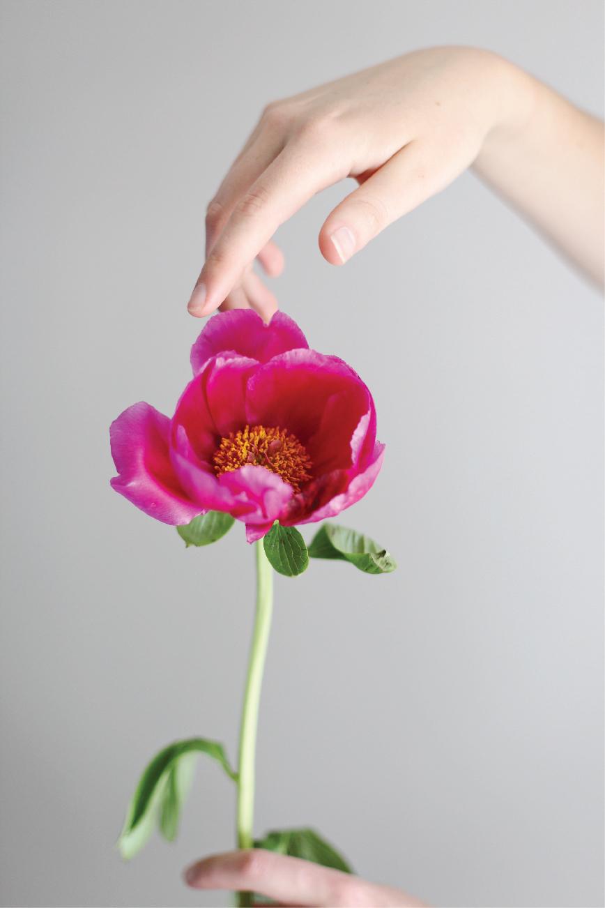 web-flower1.jpg