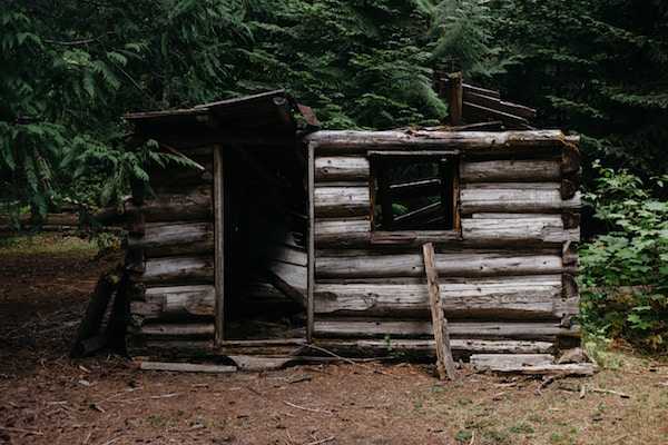 This isn't the cabin but the photo offers a glimpse into abandoned homesteads and farms where you may find old rhubarb plants.  Photo by  Patrick Fore  on  Unsplash