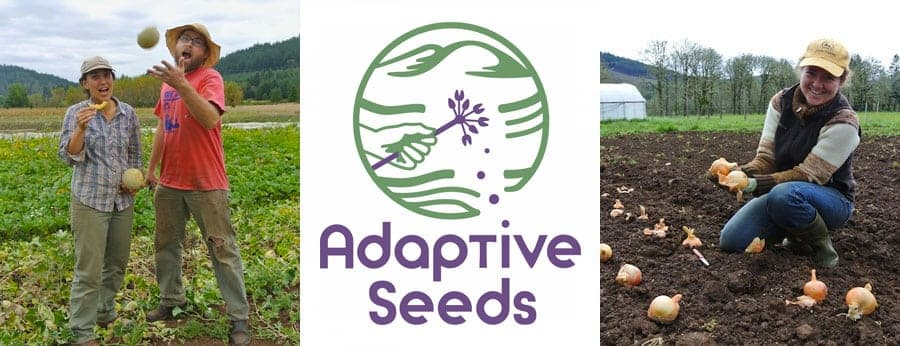 Support  Adaptive Seeds by buying seeds for some rare and unusual open-pollinated plant varieties.  We need regional seed suppliers who believe in biodiversity and public-ownership.