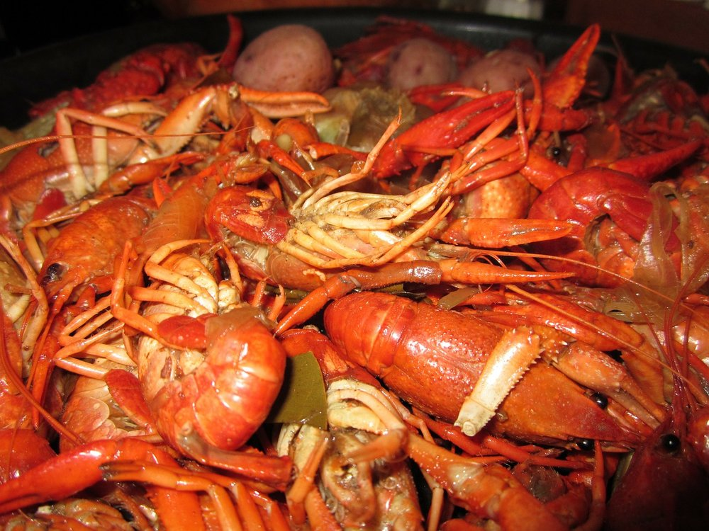 "I discovered and enjoyed many new Gulf Coast foods but crawfish was not one of them.  Perhaps it was the advice for eating them: ""pinch dat tail and suck dat head"""