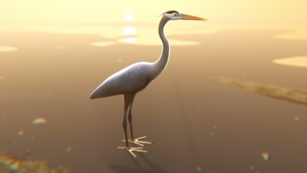 heron screentest.png