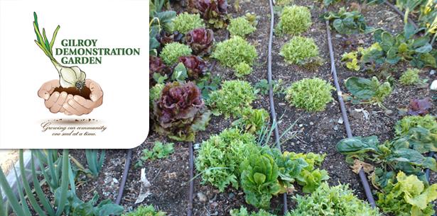 gardenheader.jpg