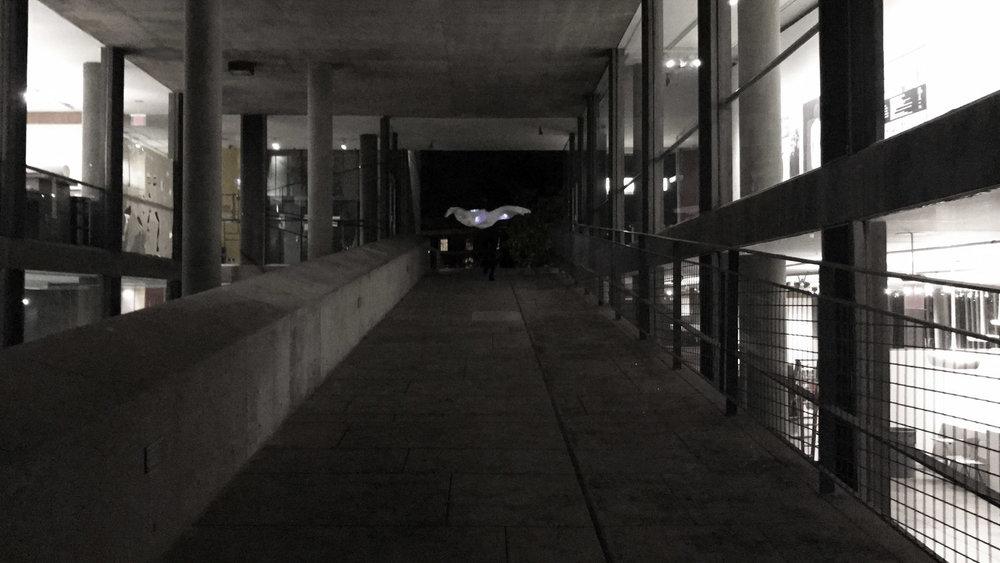 jiabao+li+concrete9.jpg